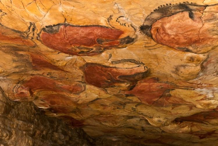 アルタミラ洞窟の画像 p1_27