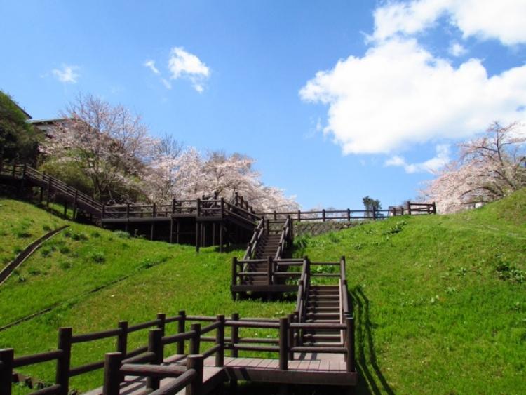 【福島】いわき・平で散歩途中に寄りたいおすすめのスポット5選