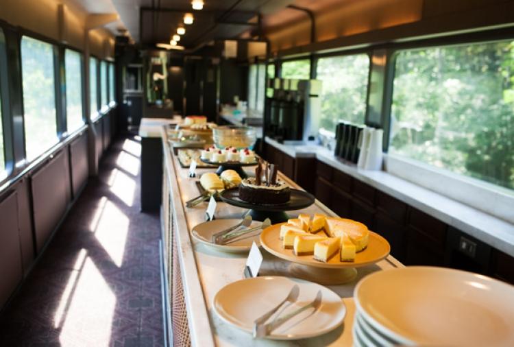 【東日本】乗車自体が目的になる豪華なグルメ&観光列車5選
