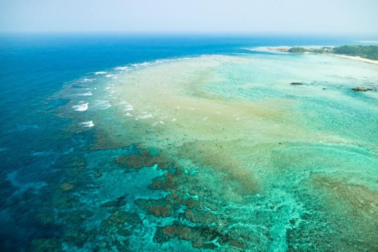 【鹿児島】目の前にエメラルドブルーが広がる奄美大島のリゾートホテル5選