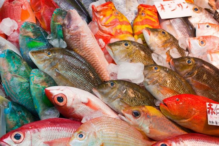 【那覇】「沖縄の台所」として親しまれている牧志公設市場の楽しみ方