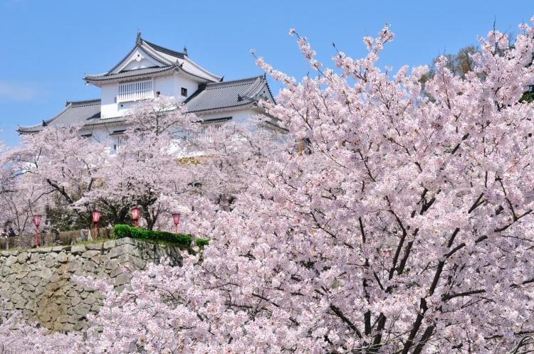【岡山】津山周辺での宿泊におすすめのホテル&旅館5選