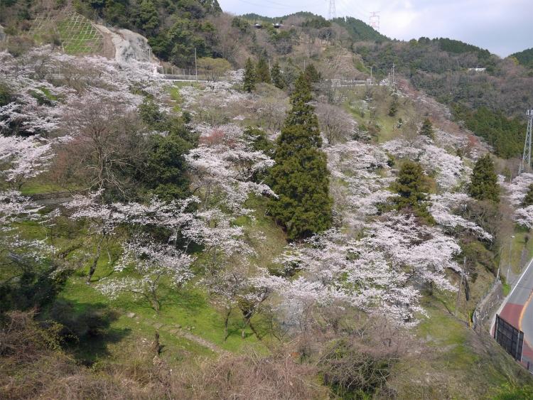 【福岡】飯塚周辺での宿泊におすすめのホテル5選