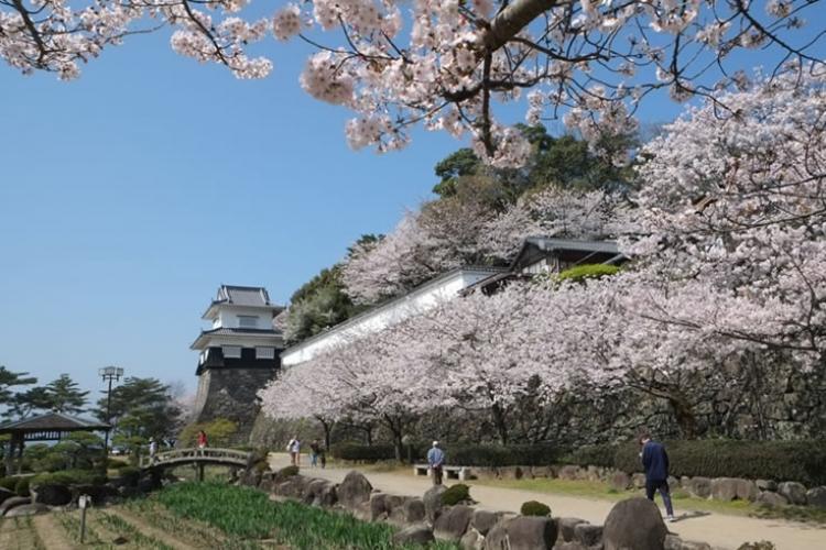 【長崎】大村周辺の宿泊でおすすめのホテル5選