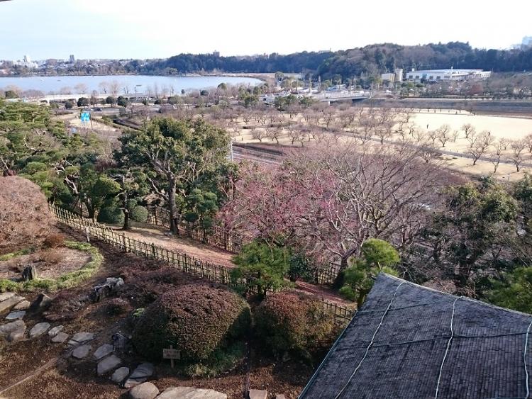 【茨城】水戸市で歴史と自然を堪能できるおすすめの日帰り観光スポット5選