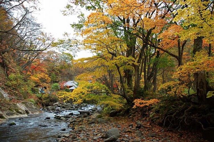 【青森】露天風呂に浸かりながら紅葉の絶景を楽しめる人気の宿5選